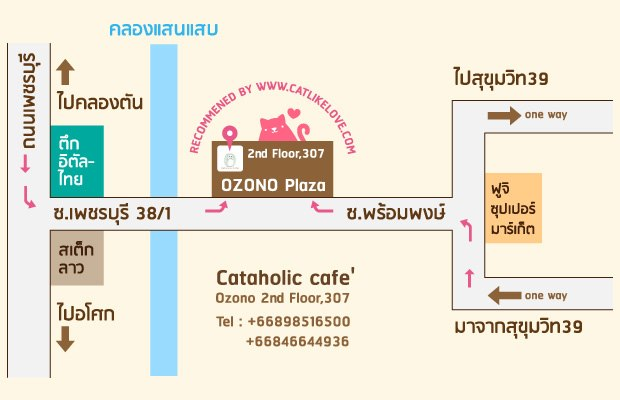 1.Cataholic Cafe