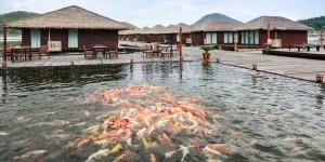 โปรโมชั่น รักน้ำรีสอร์ท จ.กาญจนบุรี มัลดีฟส์น้ำจืด ในงานไทยเที่ยวไทย